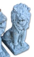 Pair of White Painted Terracotta Lions (3 of 5)