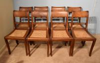 Set of Eight Regency Colonial Padauk Dining Chairs
