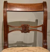 Eight Regency Mahogany Dining Chairs (5 of 8)
