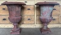 Large Pair of Cast Iron Medici Urns (2 of 10)