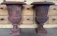 Large Pair of Cast Iron Medici Urns (3 of 10)