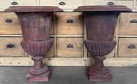Large Pair of Cast Iron Medici Urns (4 of 10)