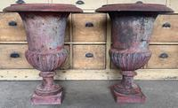 Large Pair of Cast Iron Medici Urns (7 of 10)