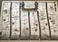 1680  Road Map London To Holyhead by John Ogilby
