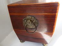 English Regency  Tea Caddy (2 of 10)