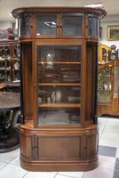 Unusual Display Cabinet / Bookcase