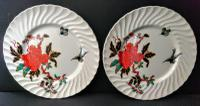 Pair of Earthenware Plates c.1880