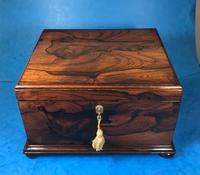 Brazilian Rosewood Twin Canisters & Twin Mixing Mixing Bowl Tea Caddy c.1830 (4 of 19)