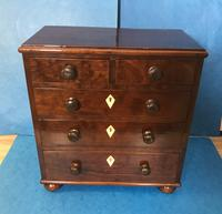 Victorian Mahogany Miniature Chest of Drawers (6 of 13)