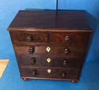 Victorian Mahogany Miniature Chest of Drawers (4 of 13)