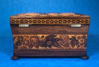 Victorian Rosewood Twin Tea Caddy with Tunbridge Ware Inlay (4 of 11)
