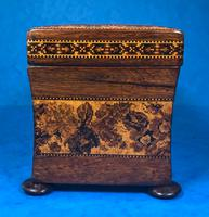 Victorian Rosewood Twin Tea Caddy with Tunbridge Ware Inlay (3 of 11)