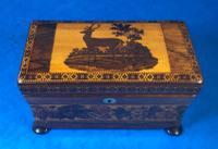 Victorian Rosewood Twin Tea Caddy with Tunbridge Ware Inlay (10 of 11)