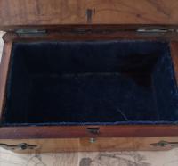 Antique Cigar / Cigarette Box, 19th Century (10 of 12)