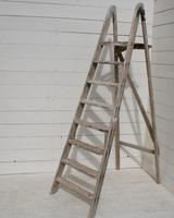 Vintage French Ladder