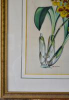 images/d001411/items/189525/DSC_1325.jpg