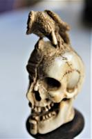 Exquisitely Carved 19th Century Dieppe Small Bone Memento Mori with Flesh To One Side of the Skull 10Cm Overall (7 of 7)