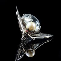 Antique Art Deco Rock Crystal Garnet Insect Brooch Silver c.1920 (4 of 5)