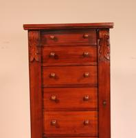 Antique Mahogany Wellington Chest of Drawers 19th Century (2 of 11)