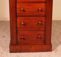 Antique Mahogany Wellington Chest of Drawers 19th Century (9 of 11)