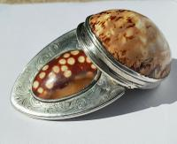 Rare Georgian 18th Century Solid Silver Scottish Double Cowrie Shell Snuff Box (4 of 12)