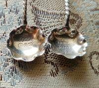 Beautiful Victorian John Millward Banks Solid Silver Salt & Spoon Cased Set Birmingham 1890 (5 of 9)