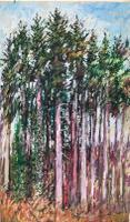 Original Oil on Board by Ken Walch 1927-2017. Pine Trees. Signed & Dated 1963