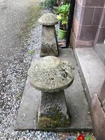 Fine Pair of Shropshire Sandstone Mushroom Staddle Stones - Staddle Stone (5 of 7)