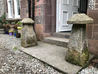 Fine Pair of Shropshire Sandstone Mushroom Staddle Stones - Staddle Stone (2 of 7)