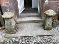 Fine Pair of Shropshire Sandstone Mushroom Staddle Stones - Staddle Stone (3 of 7)