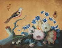 Samuel Dixon Gouache from 'Foreign & Domestick Birds'