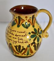 19th Century Aller Vale 'Kerswell Daisy' Pattern Jug (2 of 10)