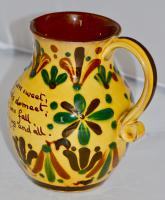 19th Century Aller Vale 'Kerswell Daisy' Pattern Jug (4 of 10)