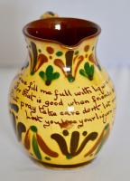 19th Century Aller Vale 'Kerswell Daisy' Pattern Jug (5 of 10)