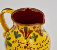 19th Century Aller Vale 'Kerswell Daisy' Pattern Jug (8 of 10)