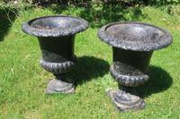 Pair of 19th Century Caste Iron Jardinieres (3 of 3)