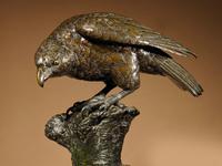 Very Decorative & Fine Bronze Model of a Hawk (5 of 19)