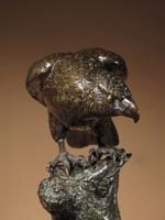 Very Decorative & Fine Bronze Model of a Hawk (7 of 19)