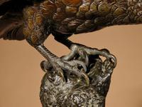 Very Decorative & Fine Bronze Model of a Hawk (15 of 19)