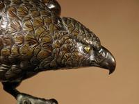 Very Decorative & Fine Bronze Model of a Hawk (17 of 19)