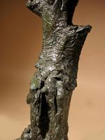 Very Decorative & Fine Bronze Model of a Hawk (19 of 19)