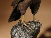 Very Decorative Bronze Model of a Hawk Sitting on a Craggy Rock (4 of 15)