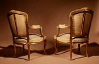 Louis XV Style Finely Carved Gildwood & Original Aubusson Tapestry Cabriolet Pair of Armchairs, 19th Century (13 of 18)