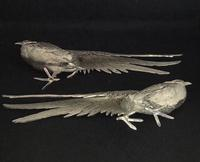 Pair of Silver Plated Table Pheasants (3 of 4)