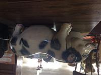 Sarreguemines Majolica Pig (2 of 5)