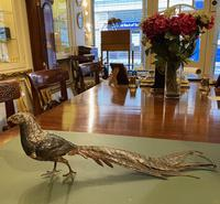 Large Austrian Cold Painted Bronze Pheasant by F. Bergmann (4 of 5)