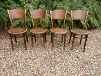 4 Thonet Chairs, Crocodile Patten, Polish (3 of 9)