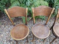 4 Thonet Chairs, Crocodile Patten, Polish (4 of 9)