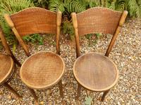 4 Thonet Chairs, Crocodile Patten, Polish (5 of 9)